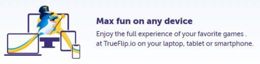 trueflip-mobile-info